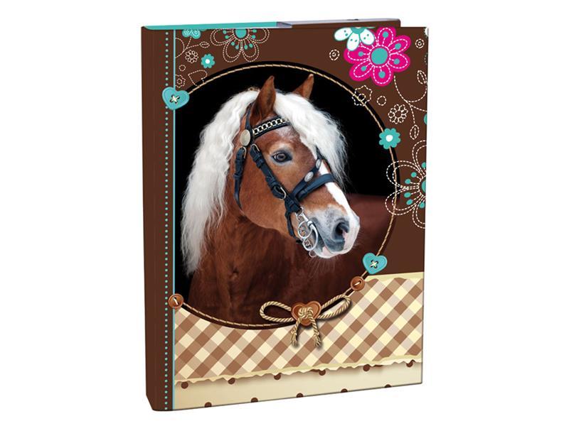 Box na zošity A4 Sweet Horse STIL