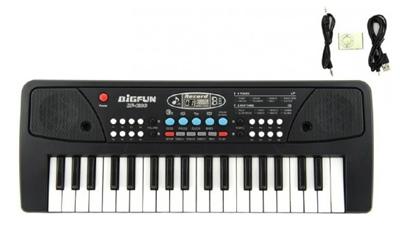 Detské klávesy TEDDIES 37 kláves