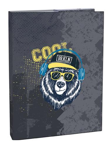 Box na zošity A4 Cool bear STIL