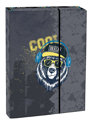 Box na zošity s chlopňou A4 Cool bear STIL