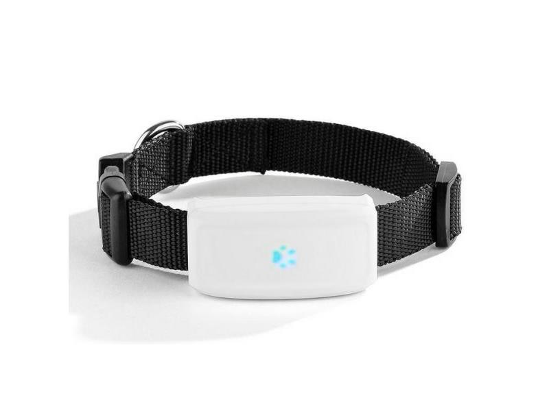 Lokátor pre psov BENTECH A700 GPS